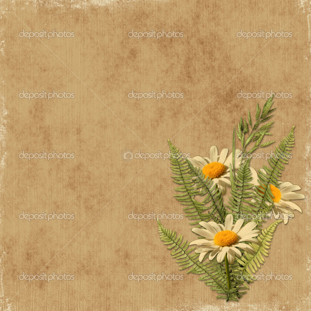 Card for the holiday with camomile on the abstract background  Foto de Stock   #1530255