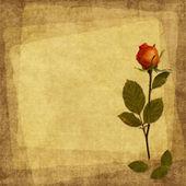 старинные карты от старой бумаги и роза — Стоковое фото