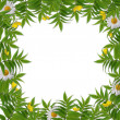 White frame with flower - Foto de Stock