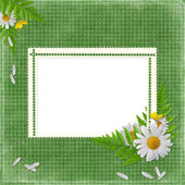 Card for the holiday with flowers — Stok fotoğraf