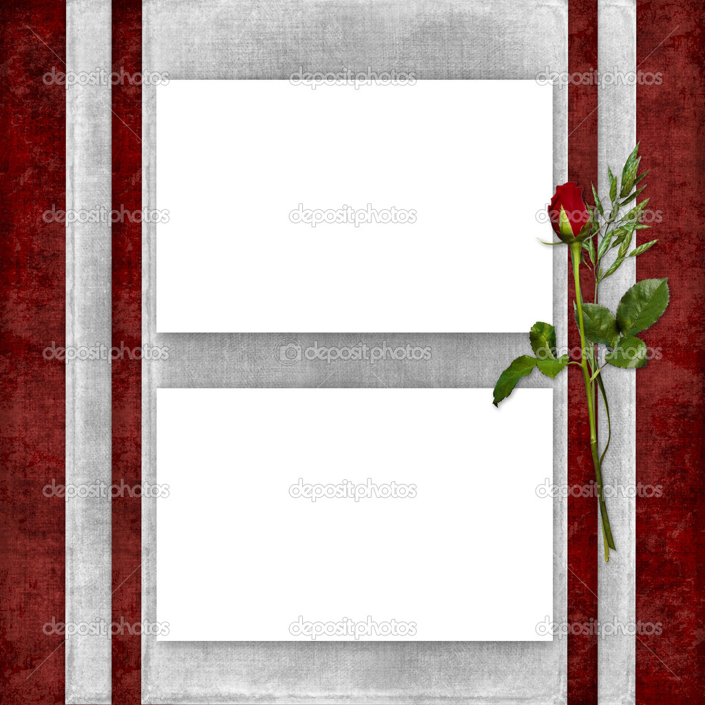 Card for the holiday with red rose on the abstract background — Stock Photo #2048763