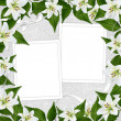 Stock Photo: White frame with flower