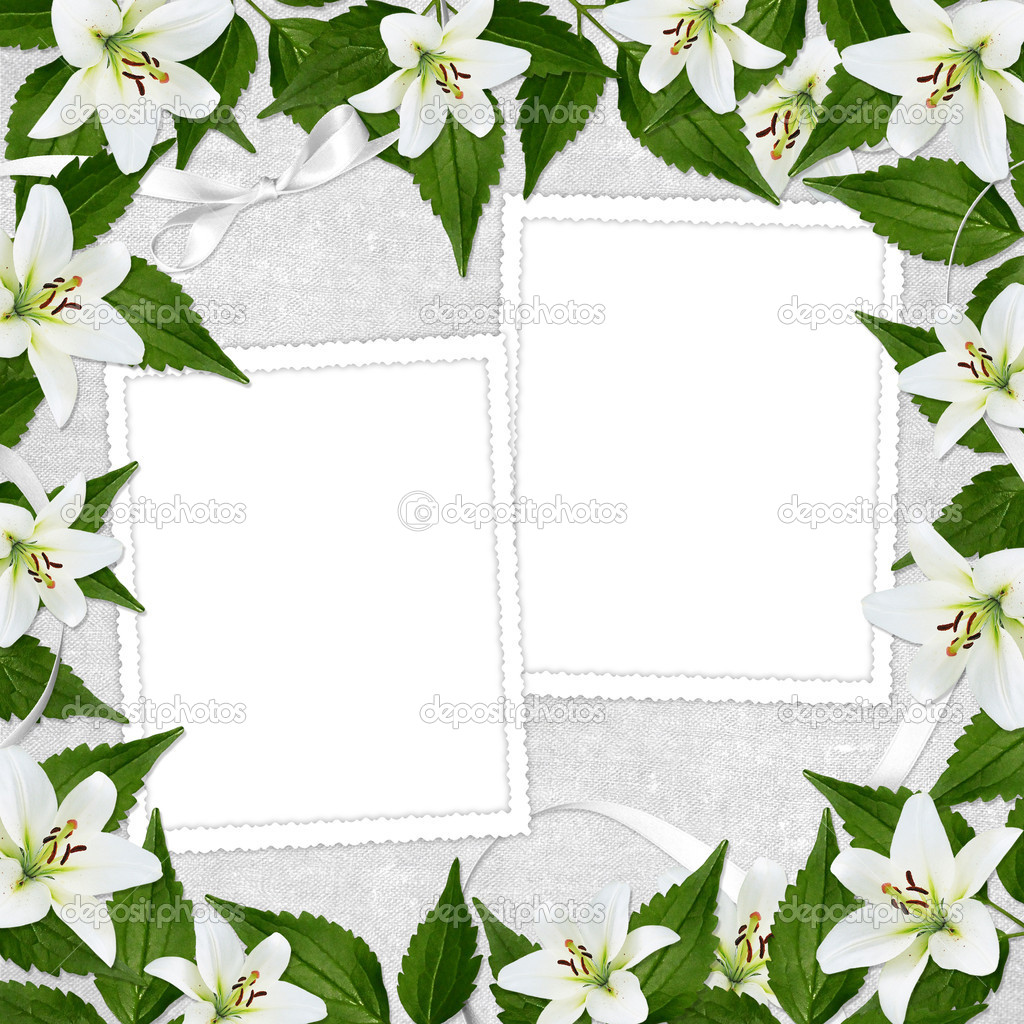 White frame with flower on the white background — Stock Photo #2289108