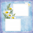 Card for the holiday with flowers — Stock Photo #2422248