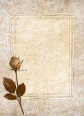 Carte vintage pour les vacances avec fleur — Photo
