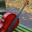 Stock Photo: Violoncello
