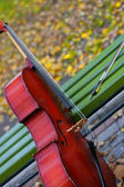 Music of autumn — Stock Photo