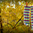 Striped socks hung to dry on rope — Stock Photo #1345756