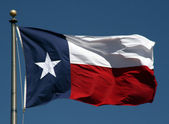 Bandeira do texas — Fotografia Stock