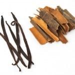 Vanilla and cinnamon — Stock Photo