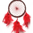 Traditional north indian dreamcatcher with red feathers and garnet beads. — Stock Photo #1438284