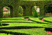 European garden — Stock Photo