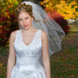 Autumn Bride in park near colorful trees — Stock fotografie
