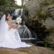 Stock Photo: Bride in wedding dress at waterfall with