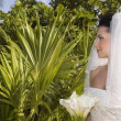 CaribbeBeach Wedding — Stockfoto #1314987
