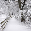 Winter in New England. - Stock Photo