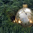 Christmas decoration — Stock Photo #2162944