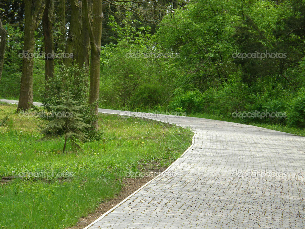 Beautiful path in park.  Stock Photo #1315410