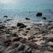 Foto Stock: Stony Shore