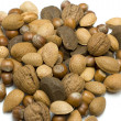 Selection of nuts — Foto de Stock