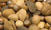 Selection of nuts — Stock Photo