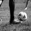Football in the park — Stock Photo #1397318