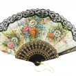 Elegant chinese fan — Stock Photo