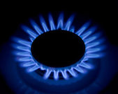 Flames of gas stove. — Stock Photo