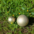 Royalty-Free Stock Photo: Golden Christmas balls on the grass