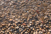 Pebbles near the water on the shore — Stock Photo