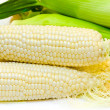 White corn — Stock Photo #1412420