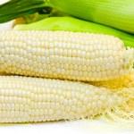 White corn — Stock Photo #1412420