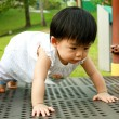 Asian Baby in Park — Stock Photo
