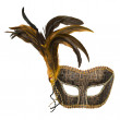 Carnival venetian mask with feathers — Stock Photo