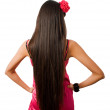 Back of slim female with long hair isolated — 图库照片
