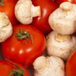 Tomato and mushroom background — Stock Photo