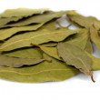 Stock Photo: Laurel leaves isolated