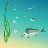 The undersea world. — Stock Vector