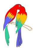 Parrots. — Stock Vector