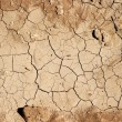 Dry Soil — Stock Photo
