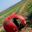 Helmet — Stock Photo #2324574