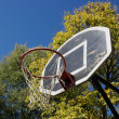 Stock Photo: Basketball Dunk