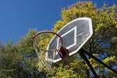 Basketball Dunk — Stock Photo