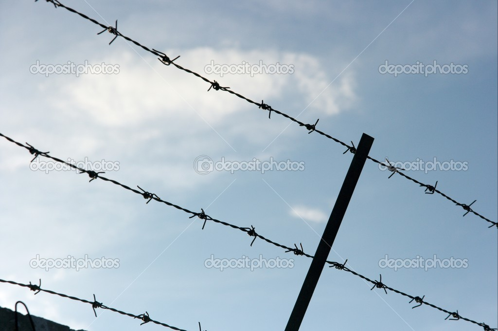 Barbed wire defense fence against blue sky — Stock Photo #2437260