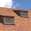 Roof of 18 century house — Stock Photo