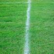 Stock Photo: Soccer field line