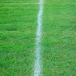 Soccer field line - Stock Photo