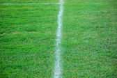 Soccer field line — Stock Photo