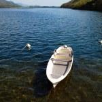 White small boat docked at the lake — Stock Photo