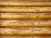 Timber wall background — Stock Photo